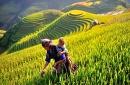 10 Days - Vietnam Panorama