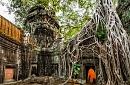 Angkor Insights