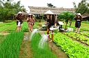 Best Cultural and Heritage Vietnam