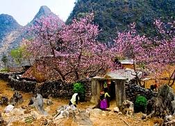 Ha Giang Plateau 3 days tour