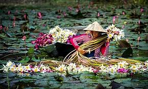 Vietnam at a Glance