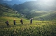 21 days Vietnam - Laos Highlighted Vacation