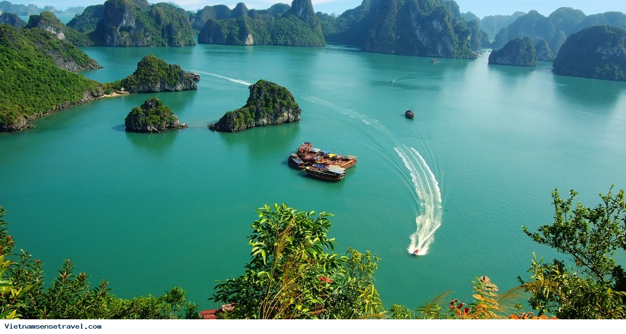 Ha Long Bay A Top 10 Asian Tourist Attraction - Ảnh 2