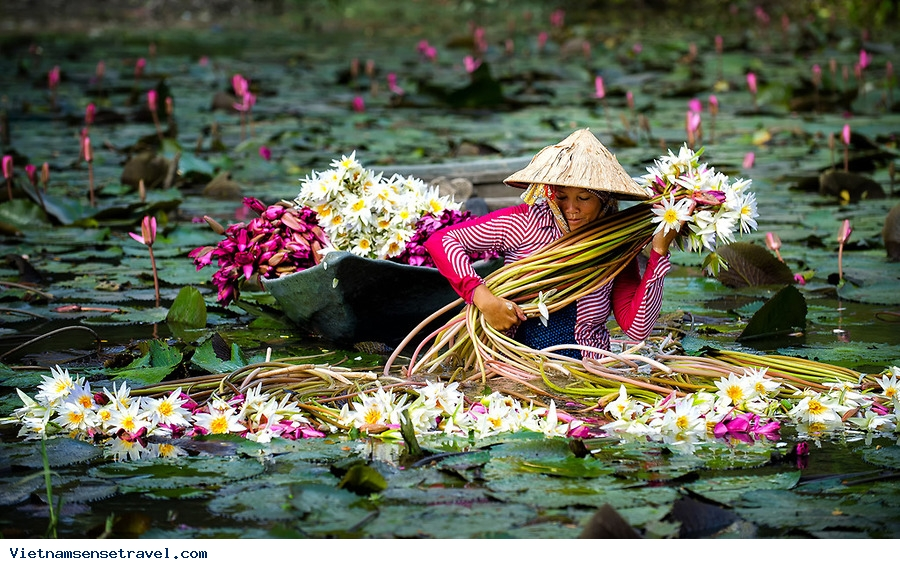 8 Days, Asia, Vietnam, Holiday