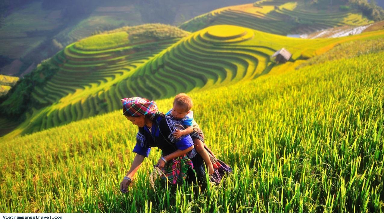 Vietnam Panorama tour, vietnam travel